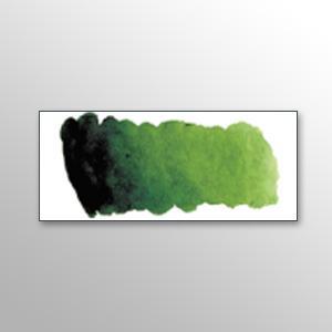 Vopsea de acuarela Mijello W534 Sap green