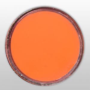 Pudra de portelan colorat 27 neon orange