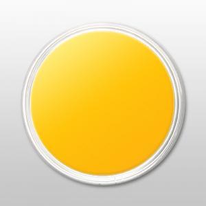 Pudra de portelan colorat 41 yellow
